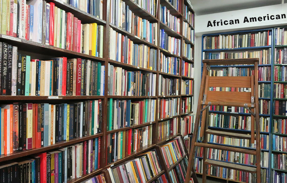 SCRATCH THE AFRICAN-AMERICAN BOOK   SECTION